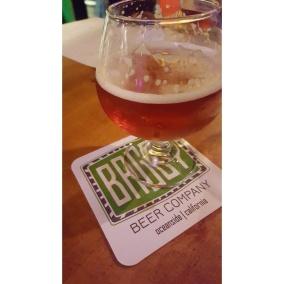 Solo Beerformance: Hop Dang IIPA