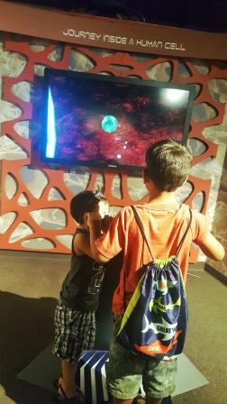Exploring Gogli bodies at the Ruben H. Fleet Science Center